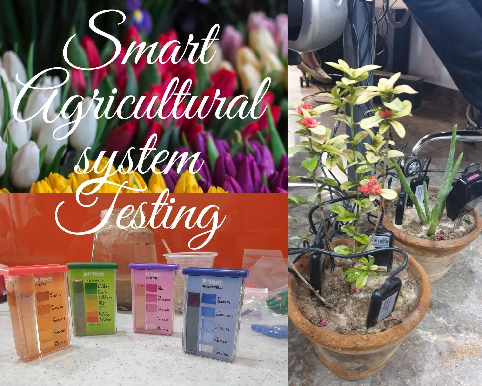 Smart agricultural system using IoT